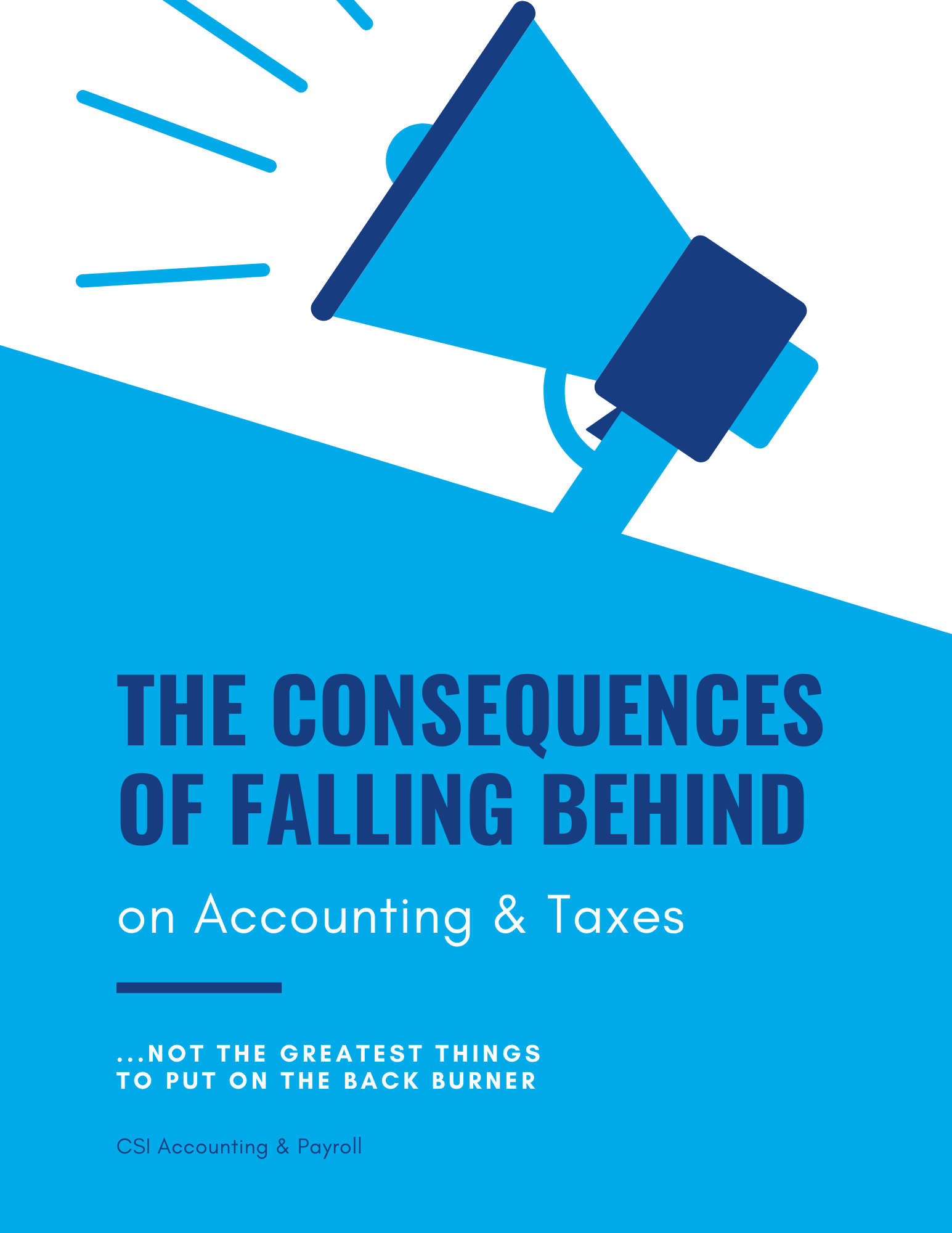 The Consequences of Falling Behind eBook